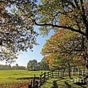 British Autumn Poster