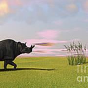 Brontotherium Grazing In Prehistoric Poster