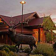 Bronze Elk At Taprock Poster
