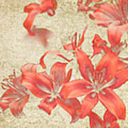 Bronze Lily Grunge Poster by Lesley Rigg