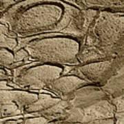 Bronze Mud Patterns 2 Poster