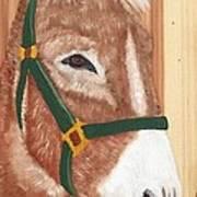 Brown Donkey On Cedar Poster