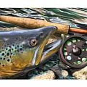 Brown Trout Sunset Poster by Craig Tinder