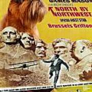 Brussels Griffon Art - North By Northwest Movie Poster Poster