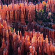 Bryce Canyon At Sunset Poster
