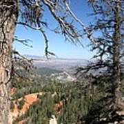 Bryce Canyon Overlook With Dead Trees Poster