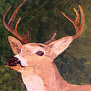 Buck Portrait Poster
