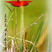 Bucket List - Blank List Poster