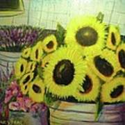Bucket Of Sunflowers Poster