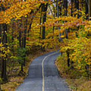 Bucks County Road In Autumn Poster