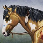 Buckskin Native American War Horse Poster by Crista Forest