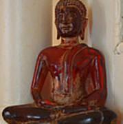 Buddha In Savannah Poster