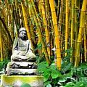 Buddha In The Bamboo Forest Poster