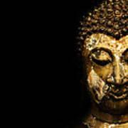 Buddha Portrait  Poster