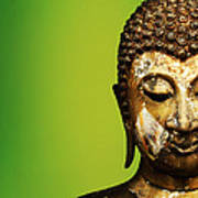Buddha Portrait  Poster by Thanes