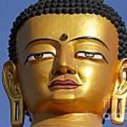 Buddha Statue At The Buddha Park In Kathmandu Nepal Poster