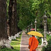 Buddhist Monk 01 Poster