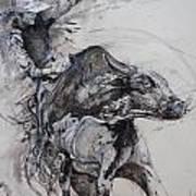 Bull Rider Poster by Bob Graham