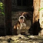Bulldog In A Doorway Poster