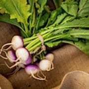 Bunch Of Turnips Poster