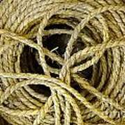 Bundle Of Old Straw Rope Poster