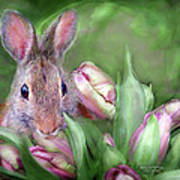 Bunny In The Tulips Poster
