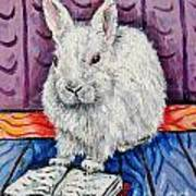 Bunny White Rabbit Reading A Book Poster by Jay  Schmetz