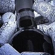 Buried Wine Bottle Poster by Tom Mc Nemar