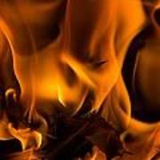 Burning Holly Poster