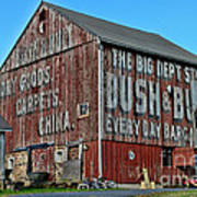 Bush And Bull Roadside Barn Poster
