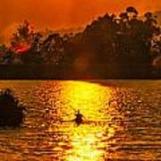 Bushfire Sunset Over The Lake Poster