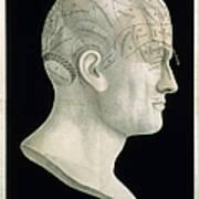 Bust Of Johan Spurzsheim Poster