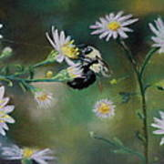 Busy Bee - Nature Scene Poster by Prashant Shah
