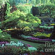 Butchard Gardens Vancouver Island Poster