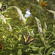 Butterflies In Golden Garden Poster