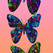 Butterfly Collage IIII Poster