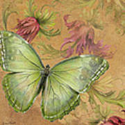 Butterfly Inspirations-a Poster