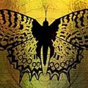 Butterfly Symmetry 2 Poster