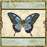 Butterfly Trio-3 Poster