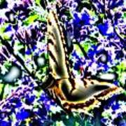Butterfly With Purple Flowers 4 Poster
