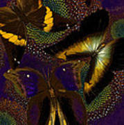 Butterfly Worlds Poster