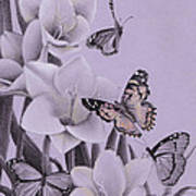 Butterflies In A Field Of Freesias Poster