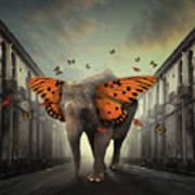 Butterphant Poster