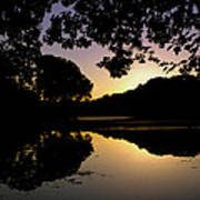 Buttonwood Sunset Poster