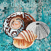 By The Seaside Original Coastal Painting Colorful Urchin And Seashell Art By Megan Duncanson Poster