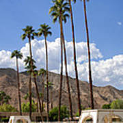 Cabanas Palm Springs Poster