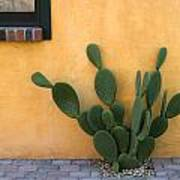 Cactus and Yellow Wall Poster