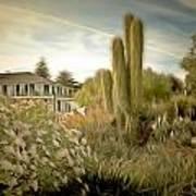 Monterey California Cactus Garden Poster