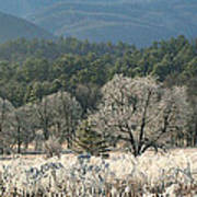 Cades Cove Panorama Poster