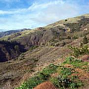 California Hillside Poster
